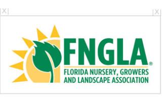 fngla logo