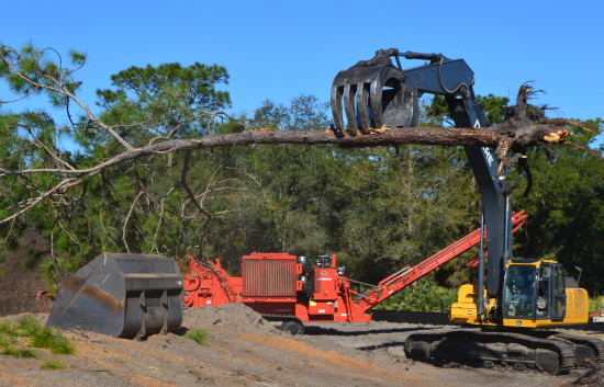 LAND CLEARING_0076